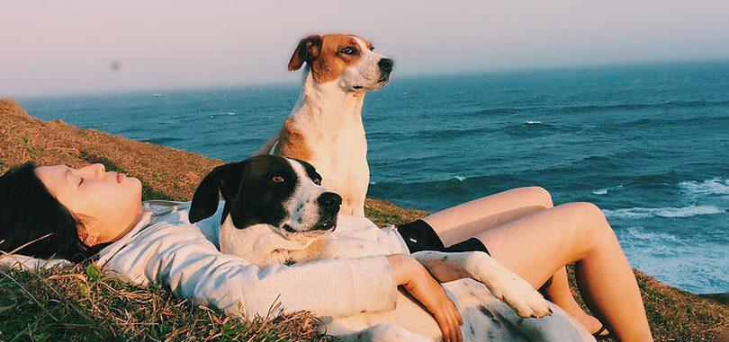 44-raisons-pour-lesquelles-avoir-un-chien-est-mieux-que-davoir-un-petit-ami