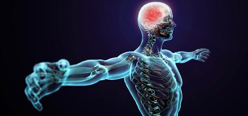 9-etapes-pour-remettre-a-neuf-votre-systeme-immunitaire