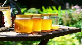 40 Vertus et utilisations du miel qui vous laisseront bouche-bée